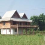 6629 - 2 bdr Villa for sale in Chiang Mai - Doi Saket