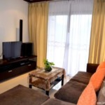 13027 - 2 bdr Condominium for rent in Phuket - Patong