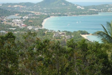 Land for sale with sea view in Koh Samui