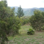 Land lot for sale in New Caledonia